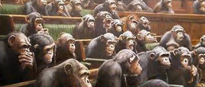 Monkey house of representatives